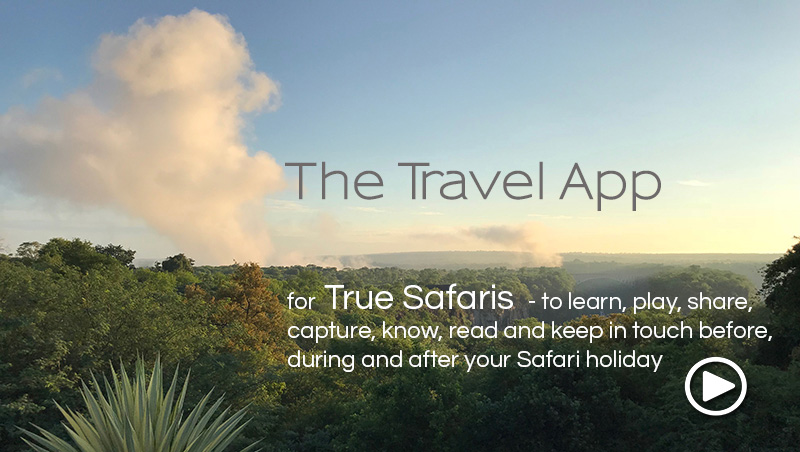 african safari travel app