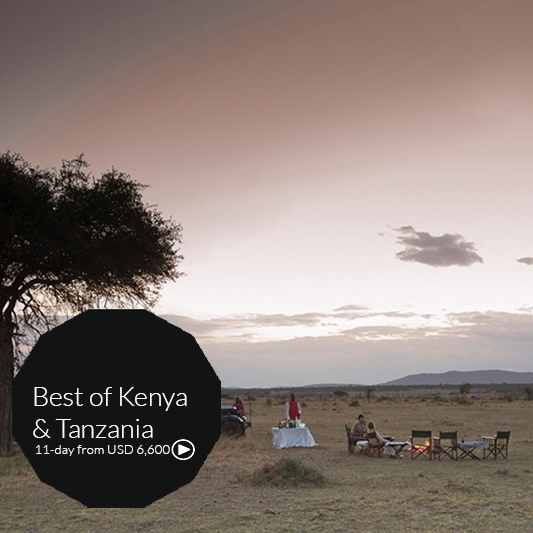 best of kenya and tanzania sadfari tour